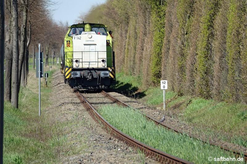 Auch das Gleis grünt: Aus den Getreidewaggons herausgefallene Körner entwickeln sich nun zunehmens zu einer Pflanze. V142 nahe der Ortschaft Grßzöberitz.