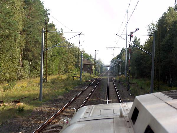 Auf freier Strecke zwischen Dessau-Süd und Marke, entstand dieses schöne Bilder mit einem Flügelsignal.
