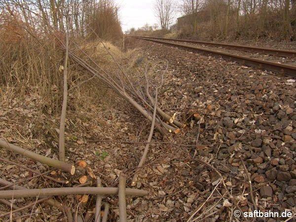 Im Stakendorfer Busch, nahe Sandersdorf sind Mitte März 2005  einige Büsche und Bäume schon verschnitten. Der Rückschnitt dauerte für die Strecke bis Zörbig über vier Wochen.