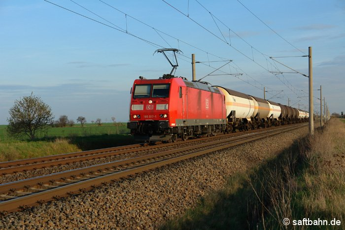 An den ersten Blattknospen des Jahres, fährt 185 017-41 am 09.04.2009 vorbei und wird in wenigen Augenblicken den Bahnhof Stusmdorf erreichen.