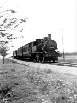 """Dampflokomotive der BR 91 mit """"1000 Türen"""" Wagen am Haken. Das Foto entstand wahrscheinlich zwischen Stumsdorf und Zörbig, nahe Zörbig."""