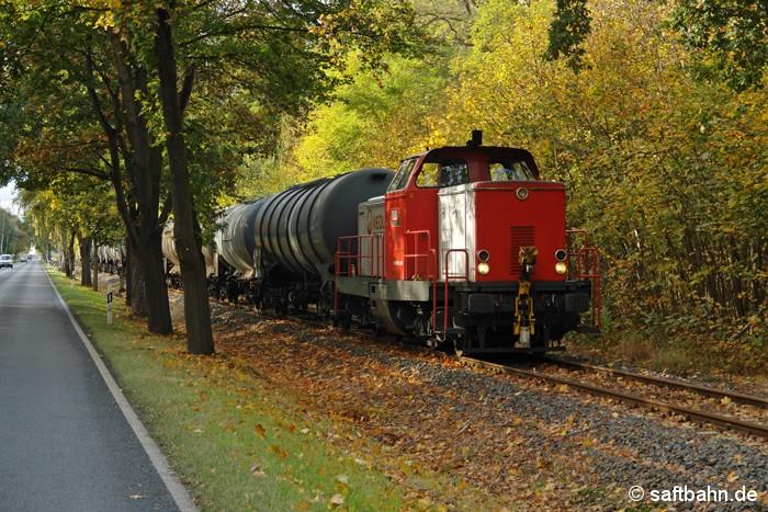 Herbstlich ansprechend war am 12.10.2009 der bunte Blätterwald im