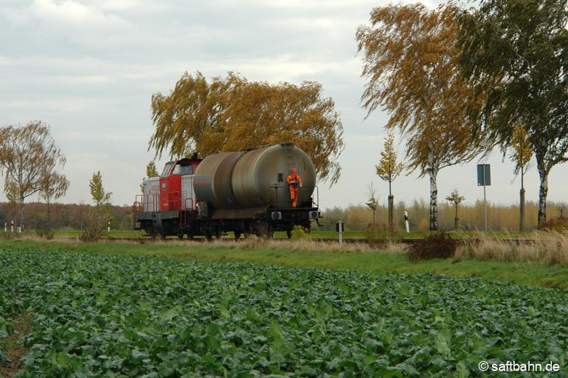Nur einen einzelnen Kesselwagen schiebt aus Bitterfeld kommend der Lokrangierführer mit seiner V133 am 26.10.2009 nach Zörbig. Bei Heideloh konnte die Bedienfahrt mit einem angrenzenden Zuckerrübenfeld aufgenommen werden.